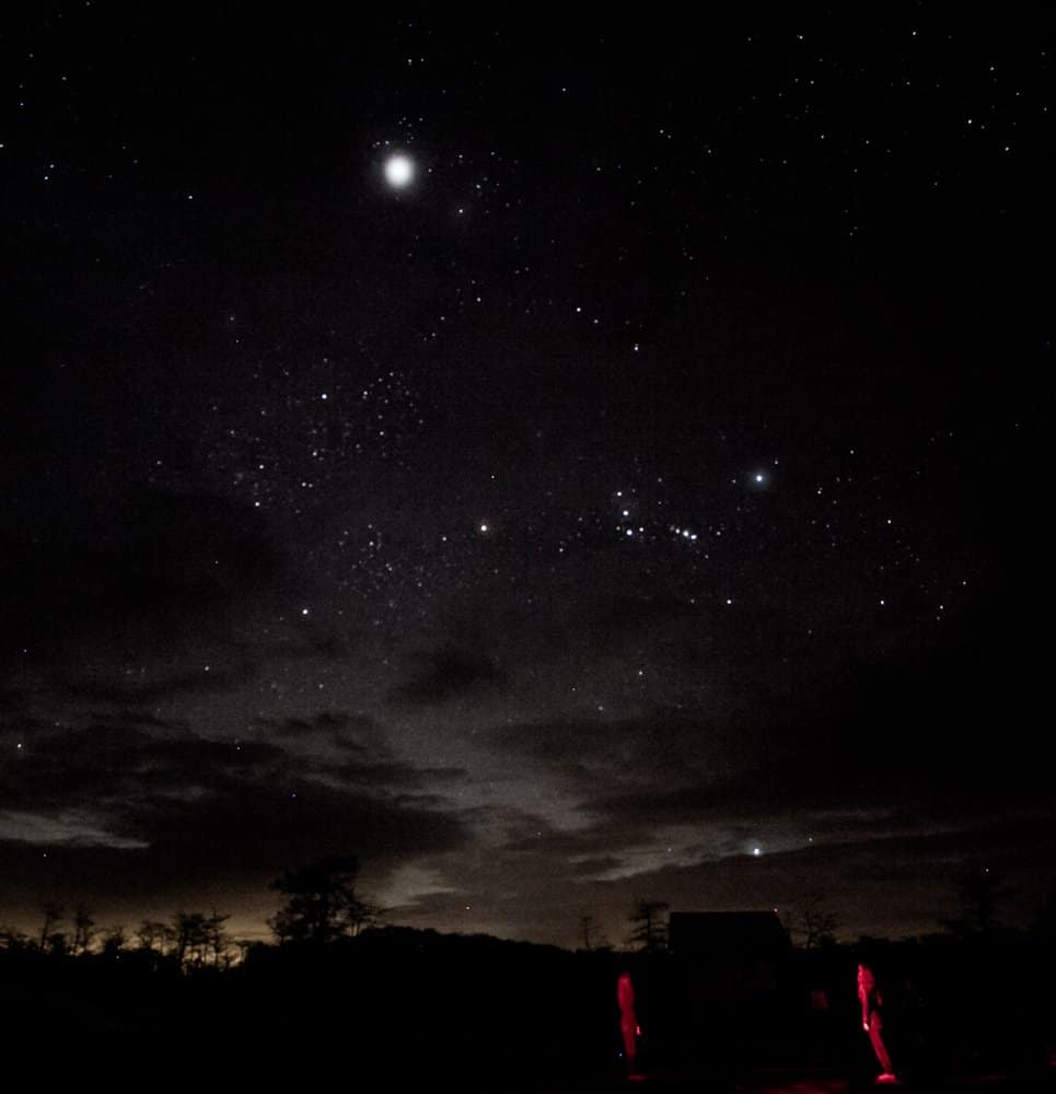 Stargazing Spots in Miami - Big Cypress National Park - TierraLady Via Flickr