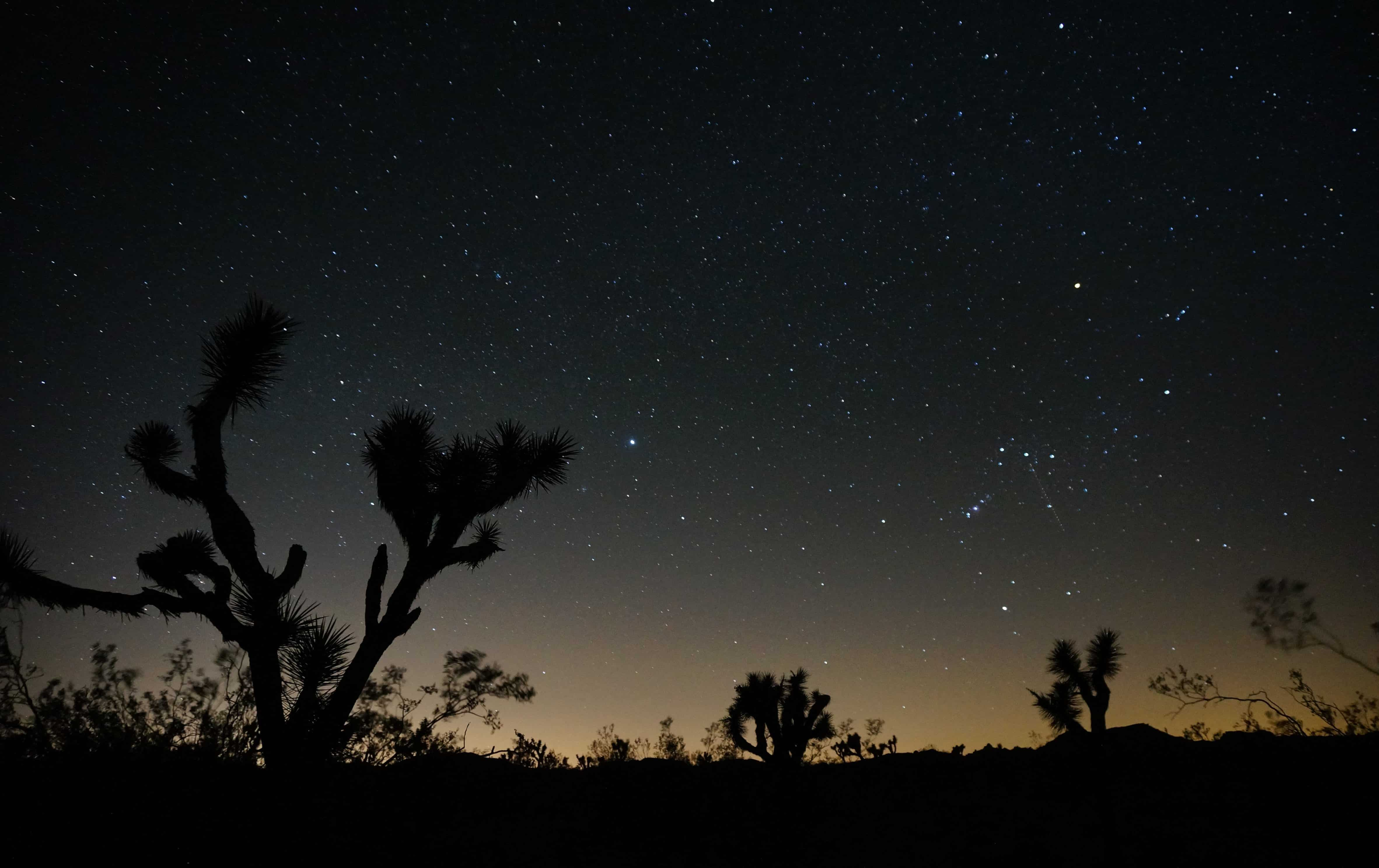 Astrophotography in Joshua Tree