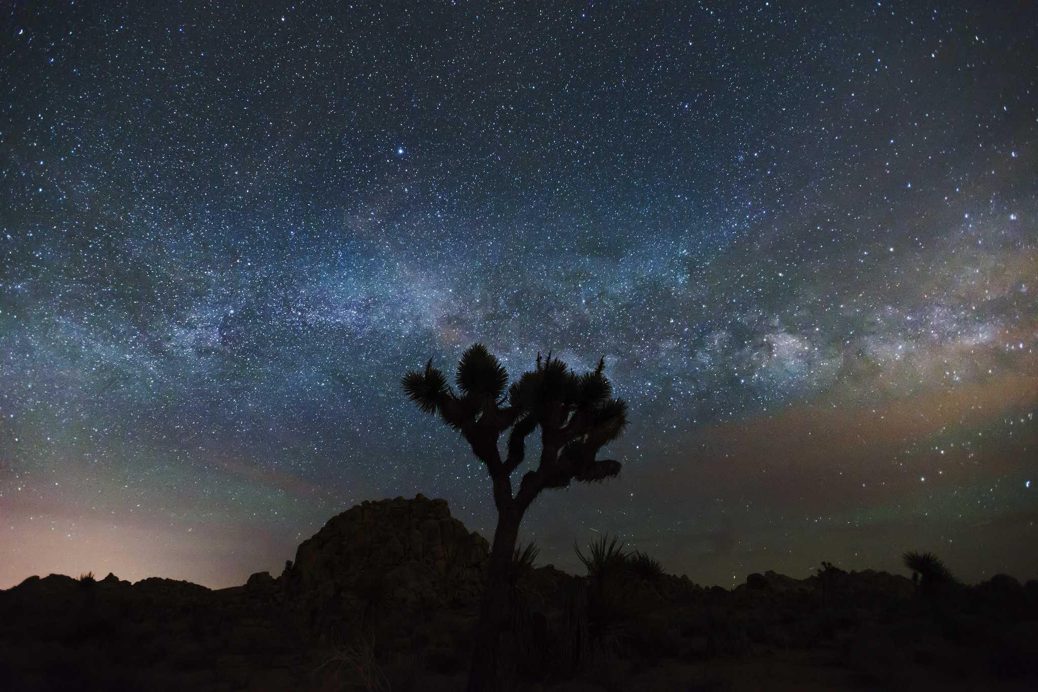 Milky Way in Joshua Tree National Park - NPS/Brad Sutton