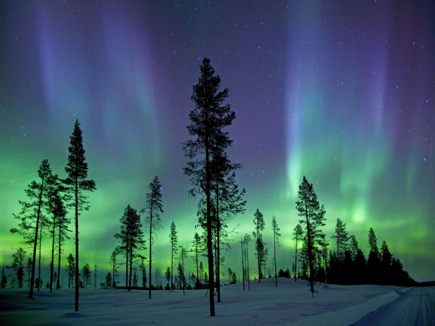 Northern Lights In Finland   Alan U0026 Flora Botting Via Flickr