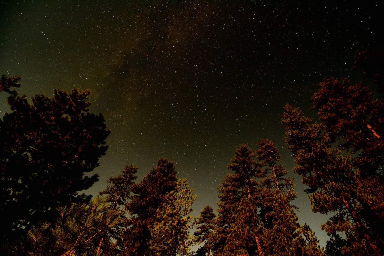 Stargazing near Portland - ZeFlower via Flckr