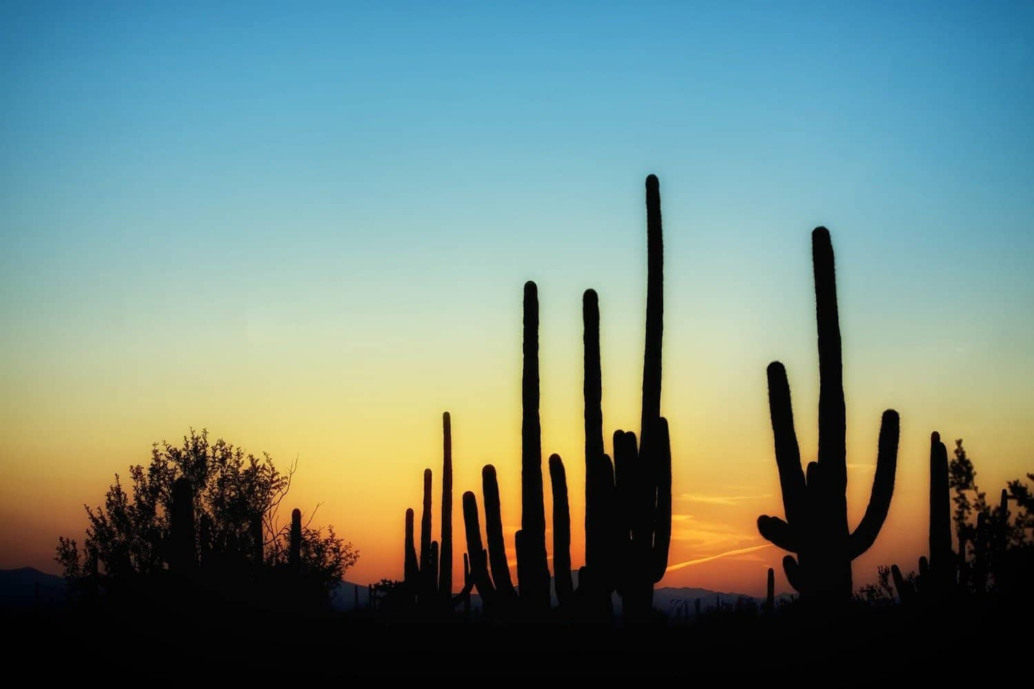 Stargazing in Tucson Featured - Pixabay