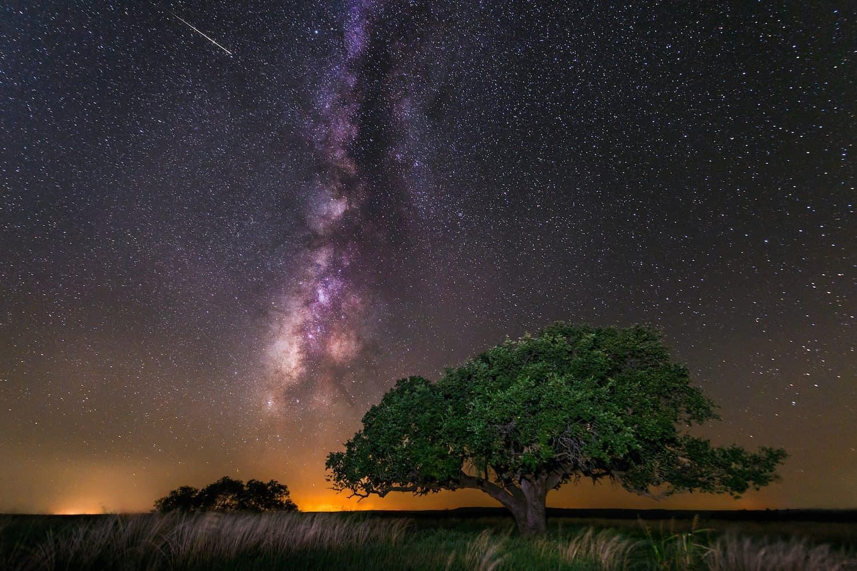 Stargazing in Houston - Shawn Stephens via Flickr