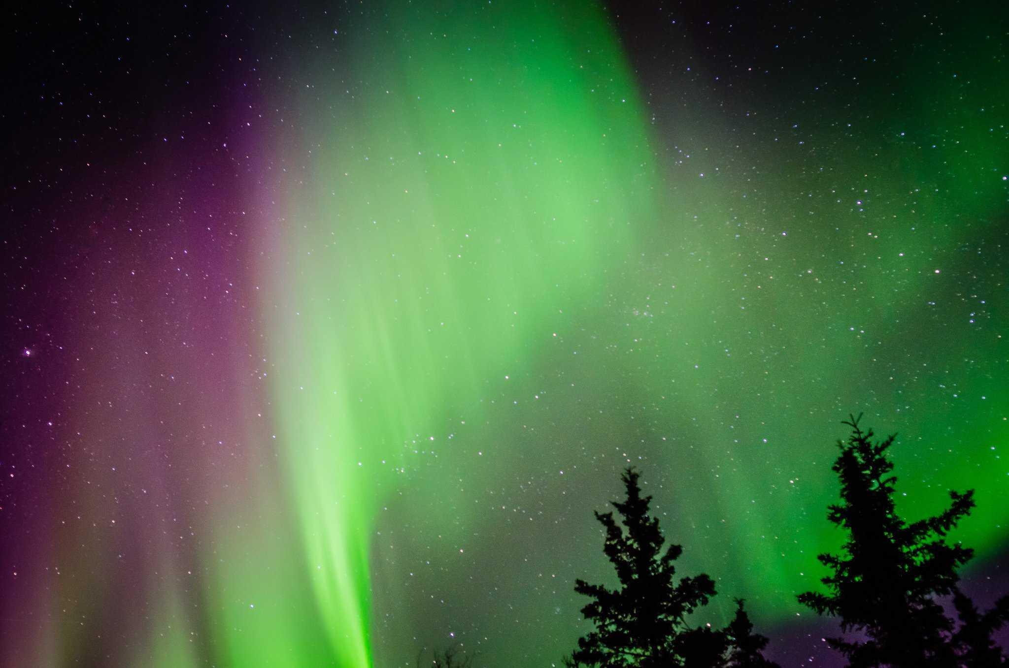 Northern Lights in Alaska - Fairbanks - Aaron Hockley via Flickr