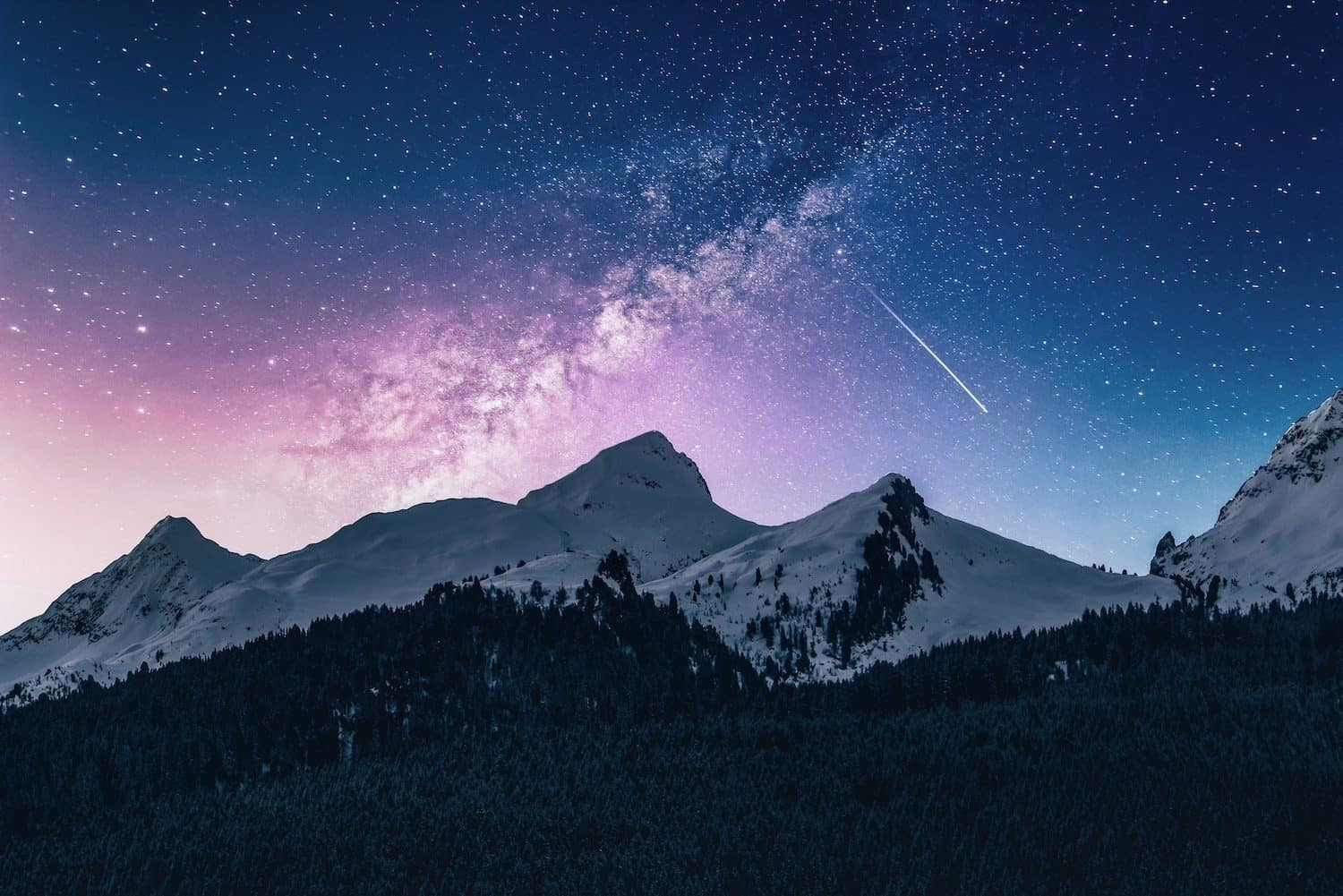 Night Sky with Foreground Interest