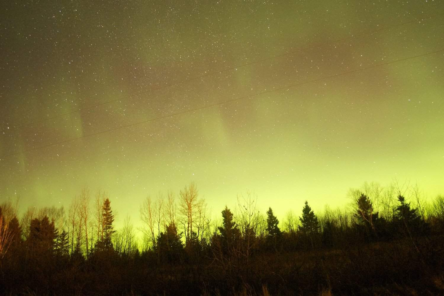 Northern Lights in Canada - New Brunswick - Nevin Williams via Flickr