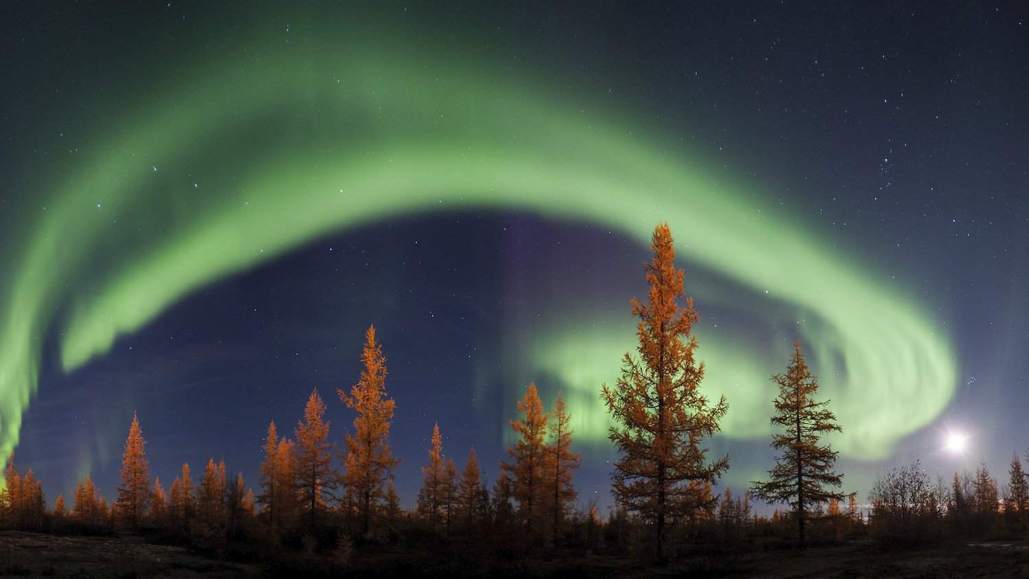 Northern Lights in Russia - Ajith Kumar via Flickr