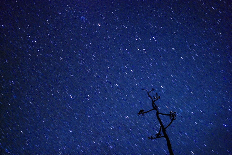 Stargazing in Big Bend - Adam Baker via Flickr