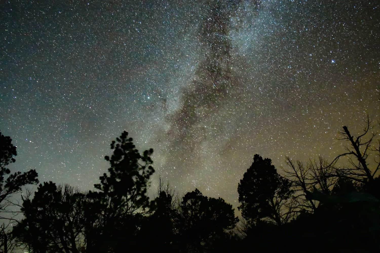 Stargazing in Big Bend - David Solce via Unsplash