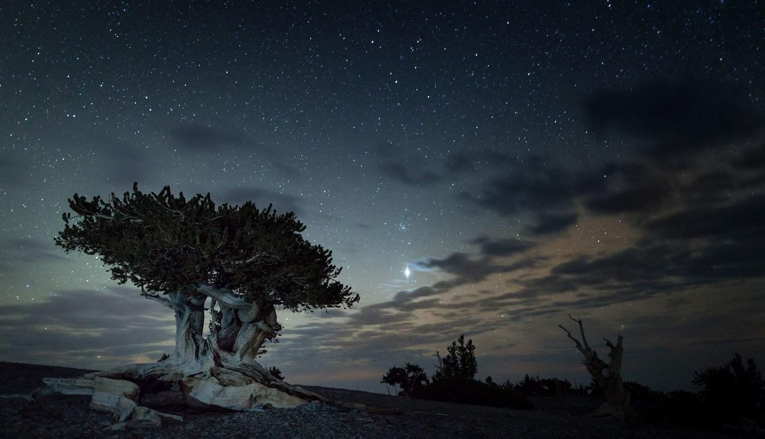 Best National Parks for Stargazing - Great Basin