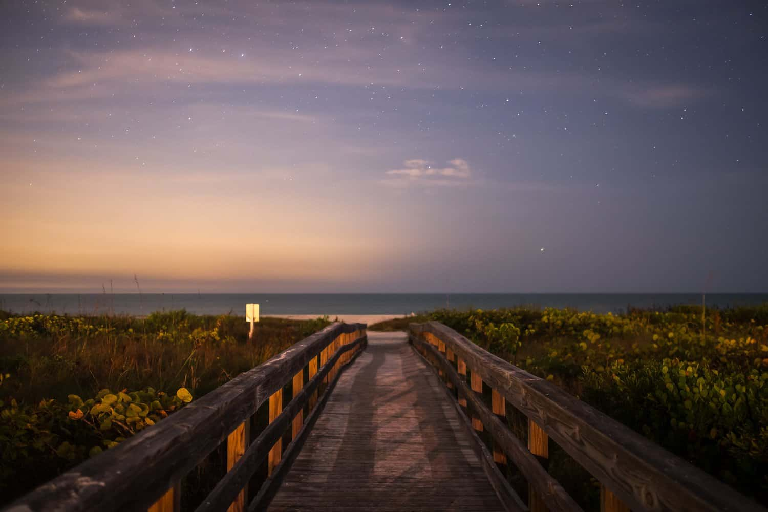 Stargazing in Florida - Giuseppe Milo via Flickr