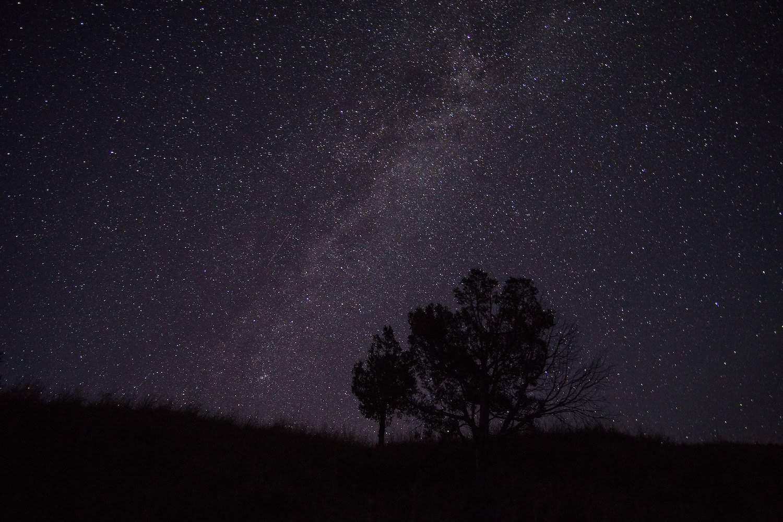 Stargazing in Badlands - Milky Way Tree - mcfst3 via Flickr