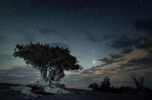 Stargazing in Great Basin Hero